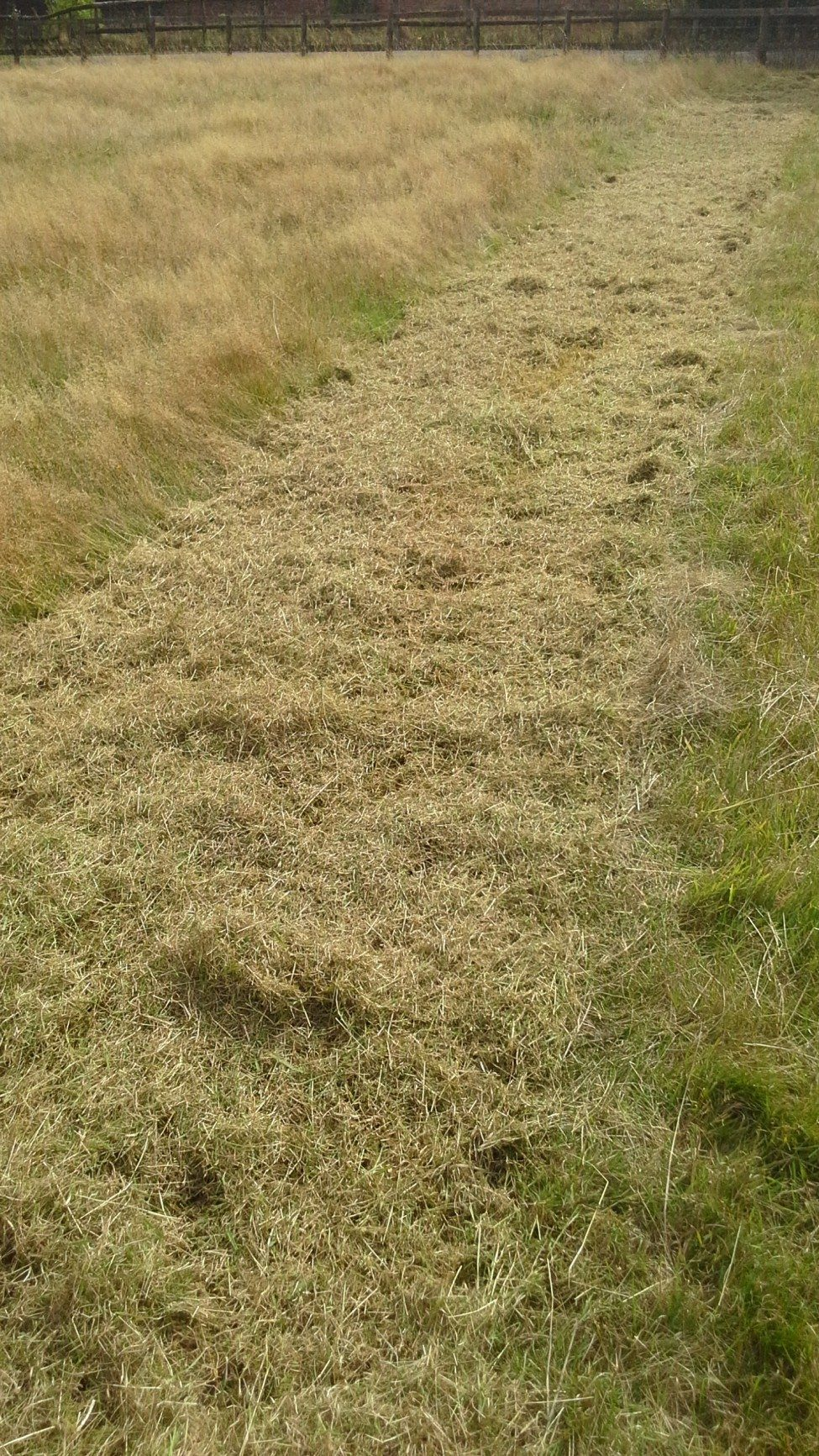 Flail Mower Grass