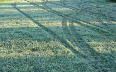farm tech frost grass