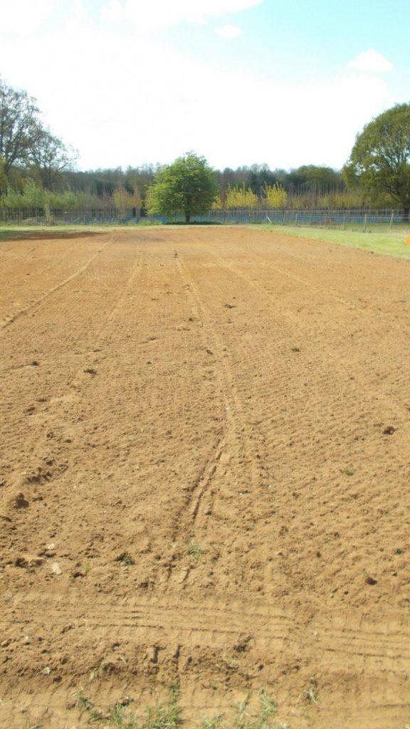 re-seeding the paddock part 1