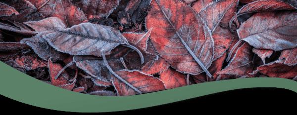 October Blog Header
