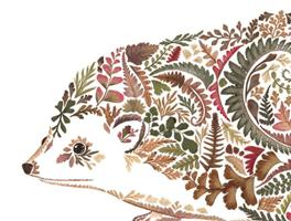 Hedgehog by Helen Ahpornsiri